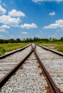 Old railroad tracks merging and switching
