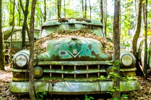 Giant old green hulk of a rusted out car in the trees
