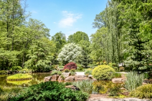 A beauifully landscaped Japanese garden in the summer